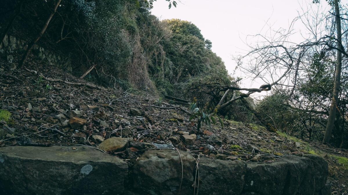 大雨と土砂災害による避難中の画像